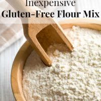 Inexpensive Gluten-Free Flour Mix