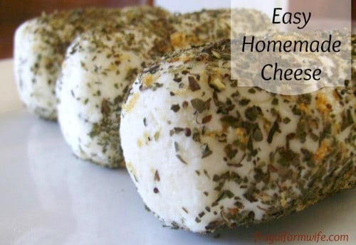 Learn how to make easy homemade cheese from this awesome blog post! So delicious!