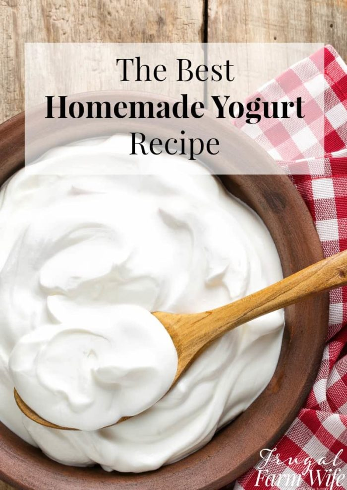 how to tell if homemade yogurt is bad