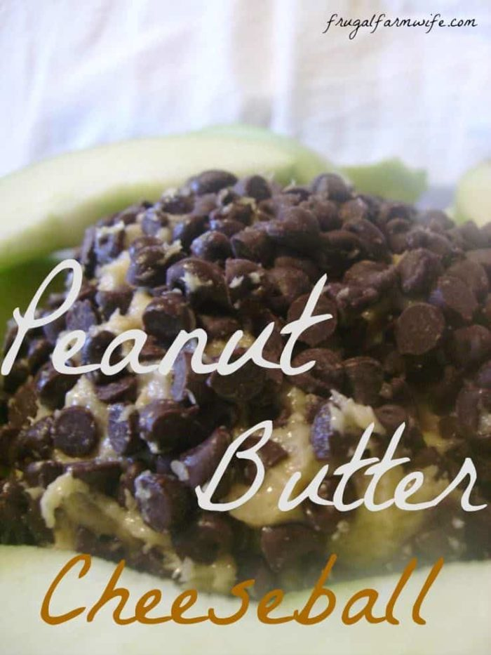 Love this peanut butter cheese ball idea from frugal farm wife! Sweet cheese balls - YUM!
