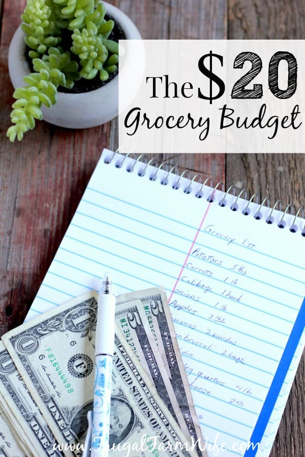 How You can spend $20 or Less on Groceries. Get the printable grocery list!