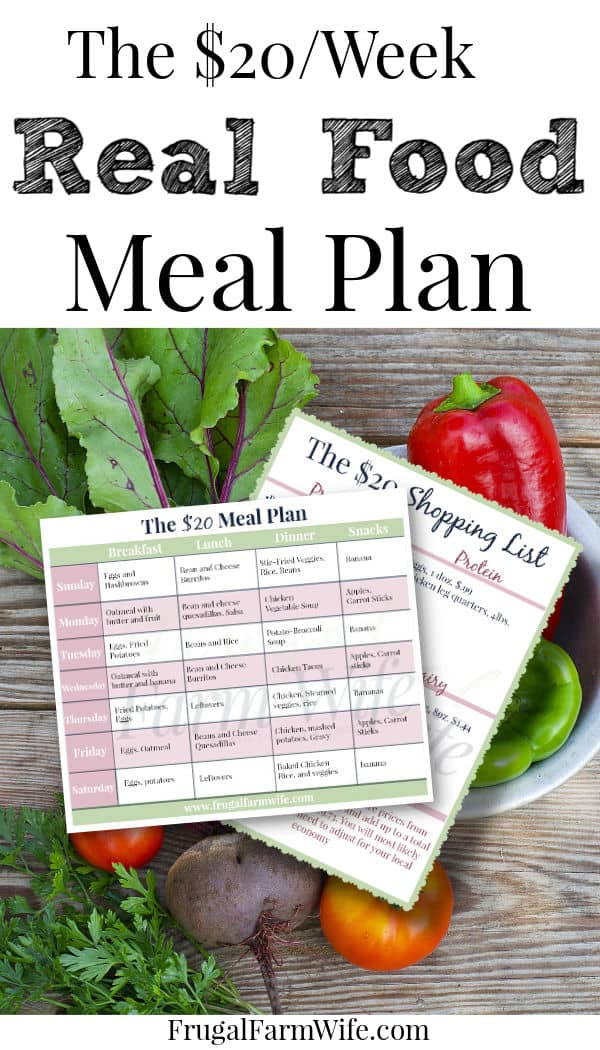 Can you eat for $20 a week? This FREE menu plan set will help!