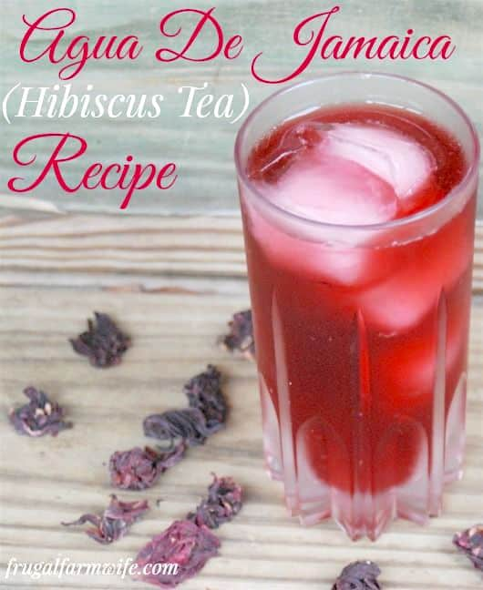 Need something different? This Hibiscus Iced Tea is like koolaid - but without the dye!