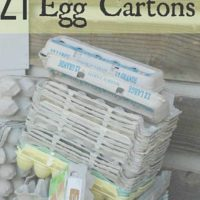 21 Uses For Egg Cartons