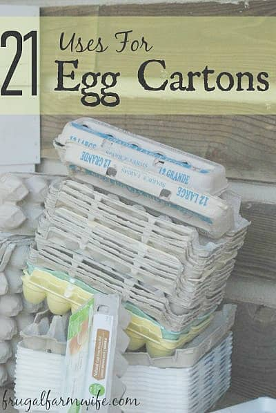 21 uses for egg cartons - don't let those egg cartons go to waste!