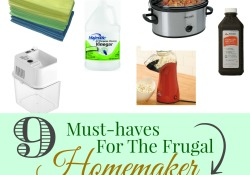 9 Must Haves For The Frugal Homemaker