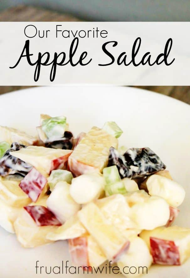 Homemade Apple Salad Recipe