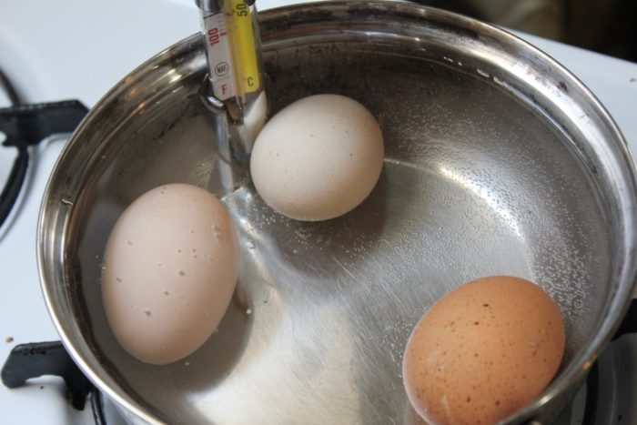 how to pasteurize eggs