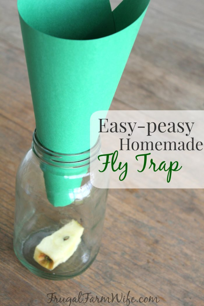 homemade fly trap totally works the frugal farm wife. Black Bedroom Furniture Sets. Home Design Ideas