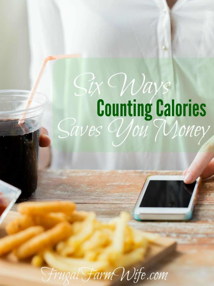 Six Ways Counting Calories Can Save You Money. I was really surprised by number5!