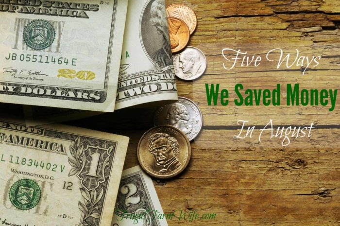 Five Ways We Saved Money In August