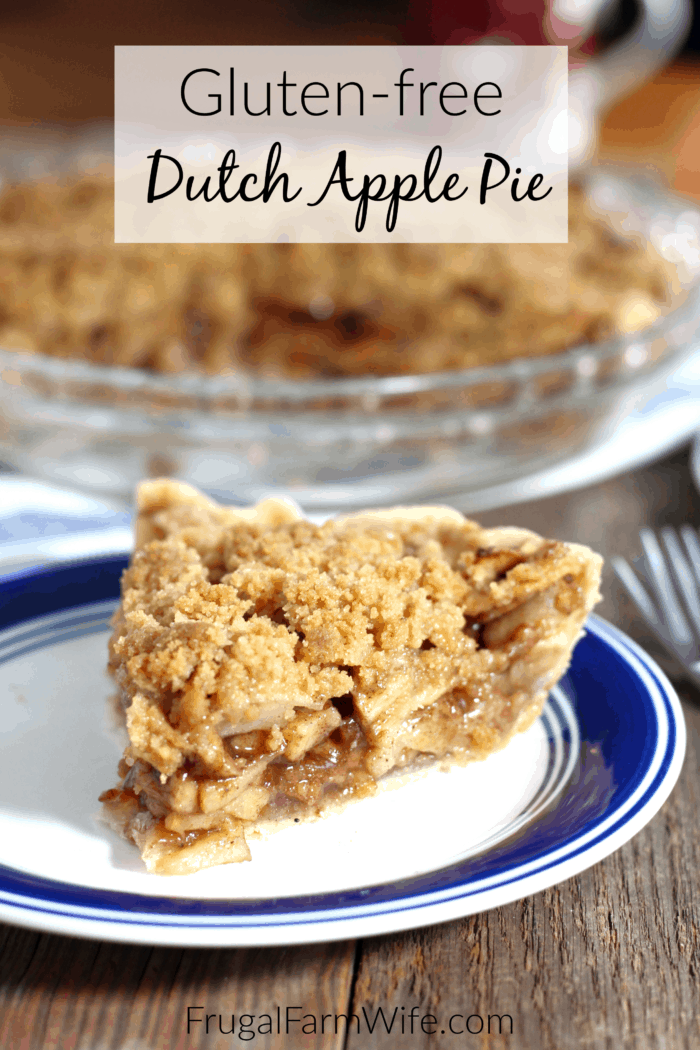 This gluten-free Dutch apple pie is the best, easy fall dessert you can make!
