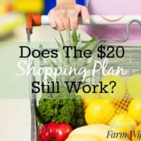Does the $20 Shopping Plan Still Work?