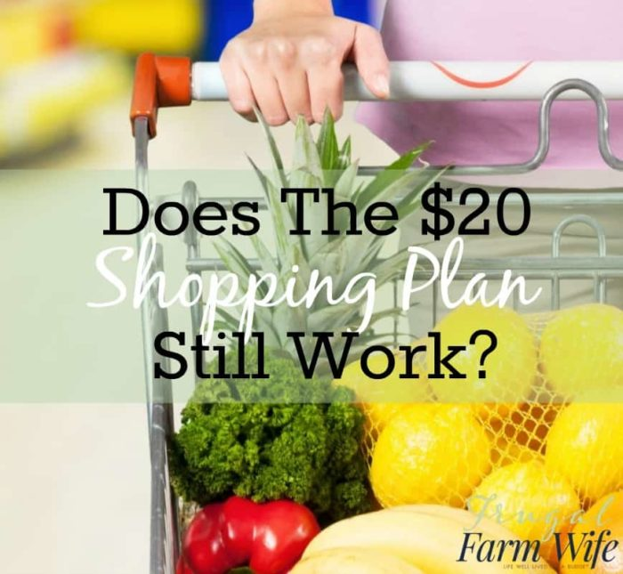 a healthy diet for 20 00 a week the frugal farm wife