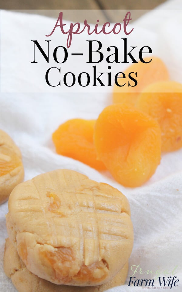 These apricot no-bake cookies are a perfect sweet treat!