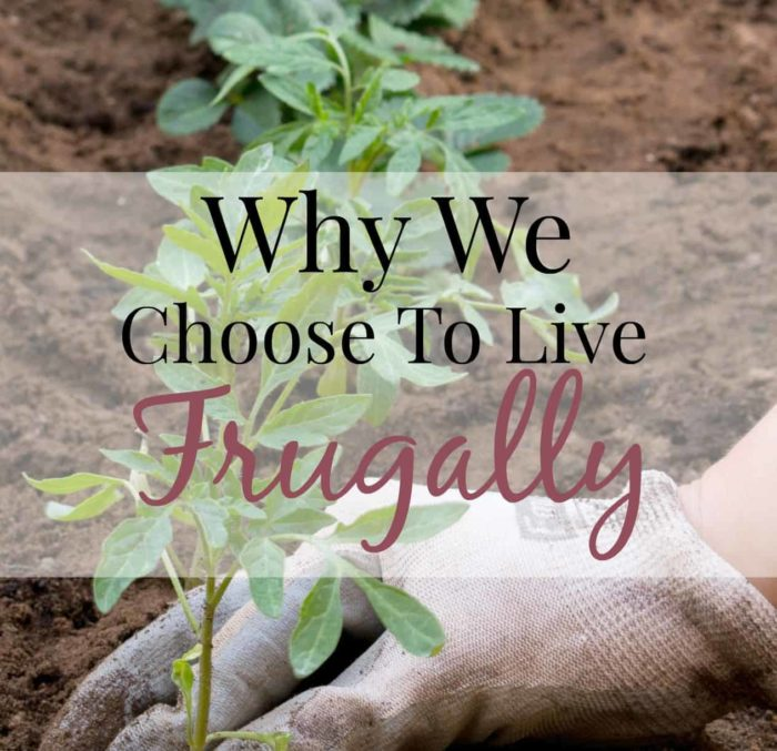 why-we-choose-frugal-living