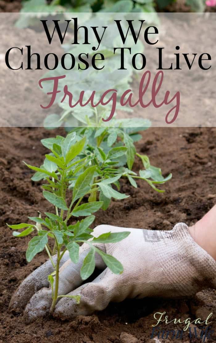 Why we choose to live frugally (and why you might want to too!)