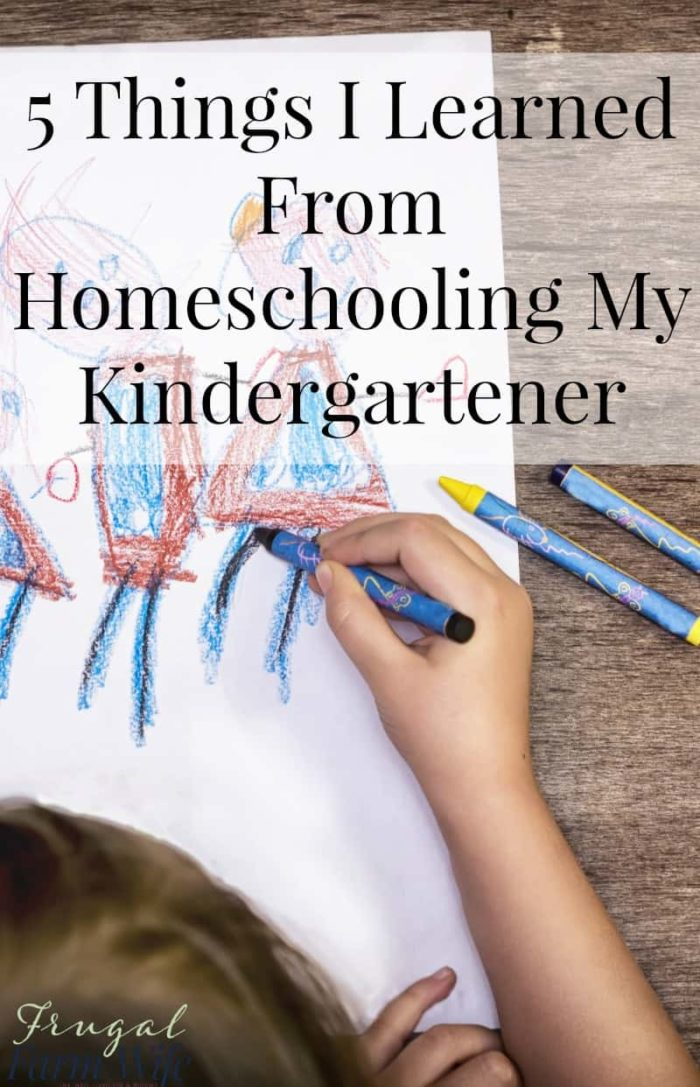 I can totally relate to this bloggers experience! I've learned a lot of similar things from homeschooling my kindergartener!