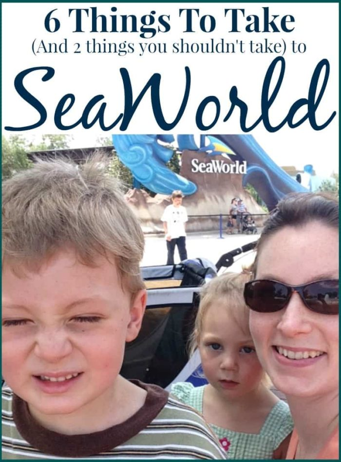 This post is all about what to bring to SeaWorld and what NOT to take! Super helpful hints for moms with kids! I can't wait to take our family here this summer!