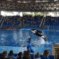 The One Where I Took The Kids To Seaworld and Forgot My Phone Charger (Weekend Wrap-up)