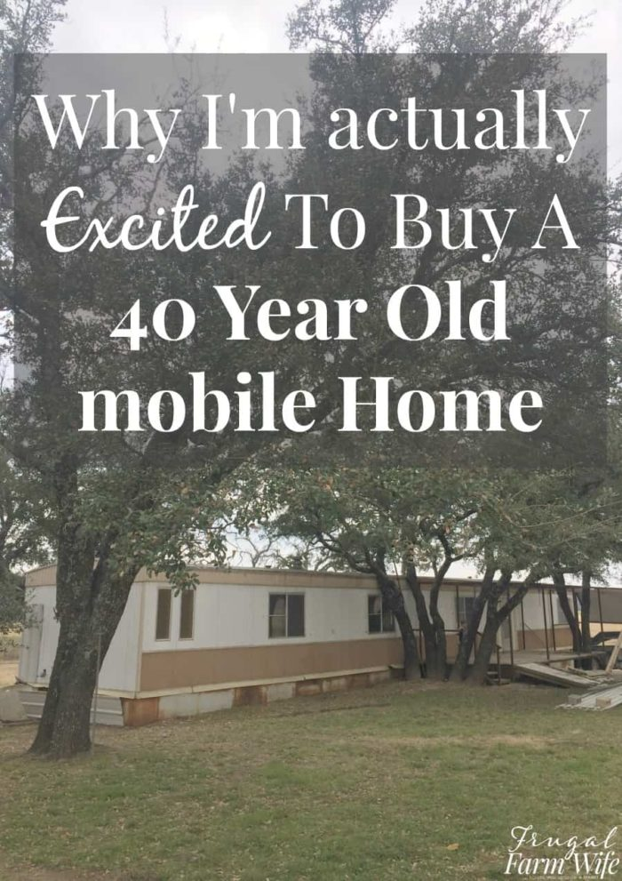 This blogger and her husband are buying an old mobile home - 40 years old! - so that they can live on their farm debt free! She's super excited to do the renovations themselves even though it looks like it needs a ton of work!