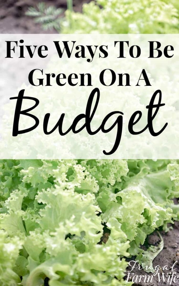There are some great ideas in here for how to go green on a budget!