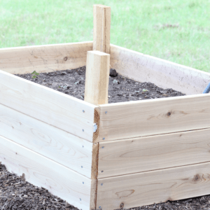 How To Build A Self-Watering Strawberry Garden