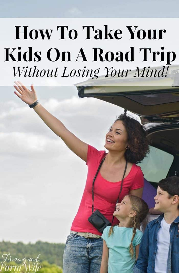 how to take your kids on a road trip - and not lose your mind!