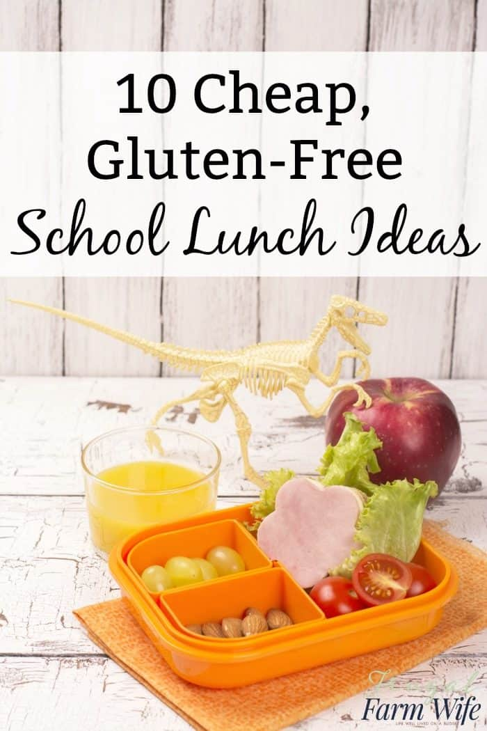 These 10 cheap gluten-free school lunch ideas your kids will love!