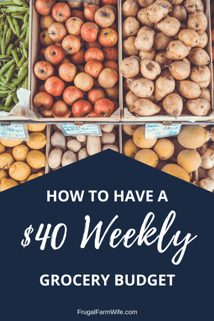 with these tips, you can easily feed your family for just $40 a week!