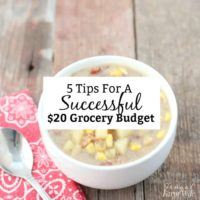 5 Tips For A Successful $20 Grocery Budget