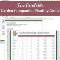 Garden Companion Planting Guide