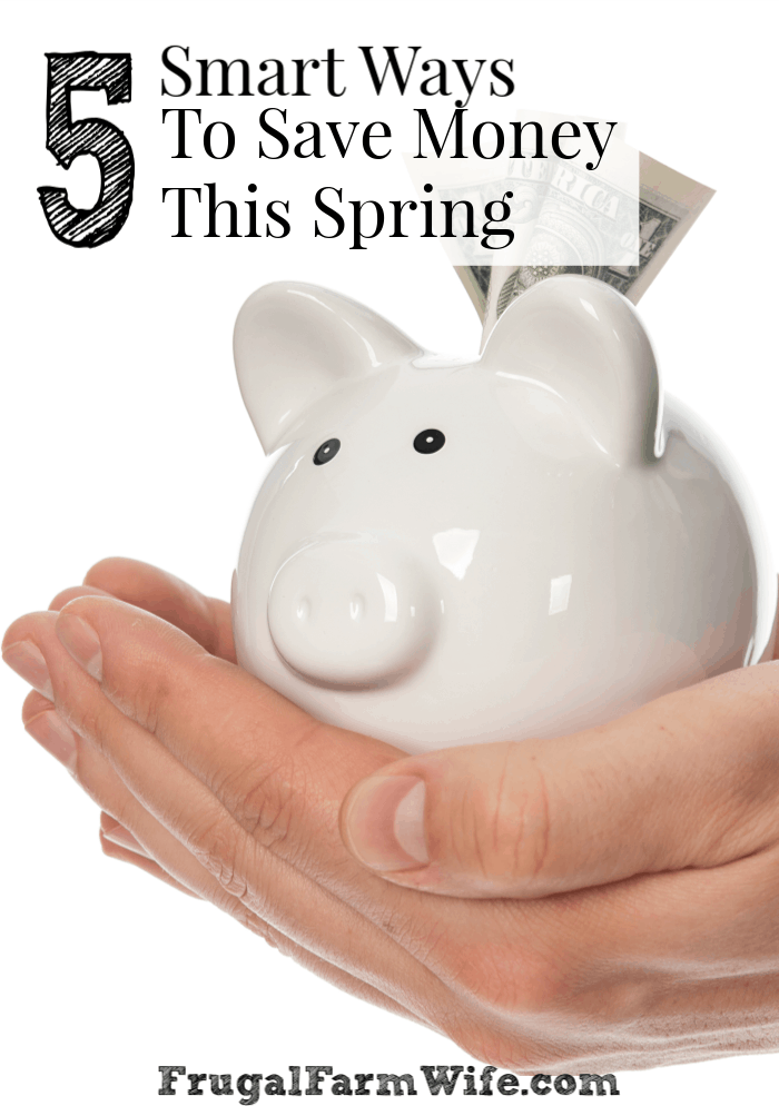 5 smart ways to save money this spring