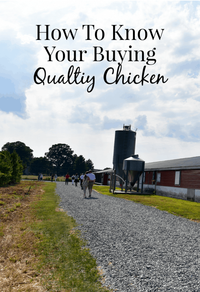 How to be sure you're buying Quality chicken, these Three tips are all you need!