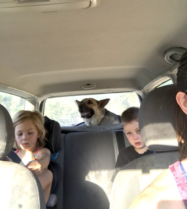 my car carries me, my kids, and my dog. Who cares if it's a beater car?