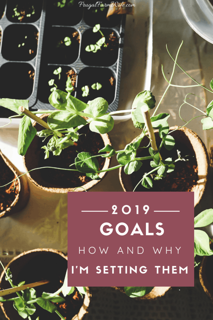 how and why I'm setting goals as a rural mom of two in 2019