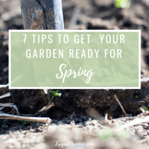 7 Tips To Get Your Garden Ready For Spring