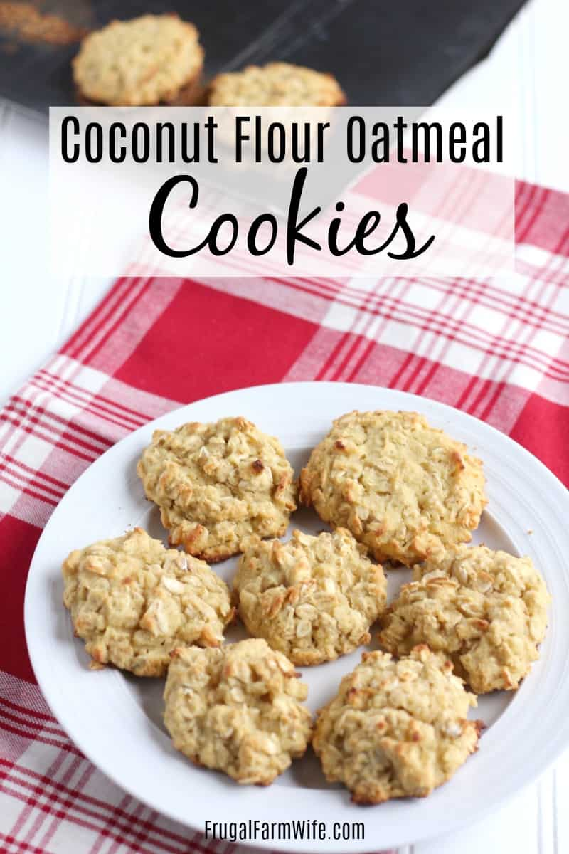 Looking for a healthy afternoon treat? These coconut flour oatmeal cookies are the easy recipe you're looking for!