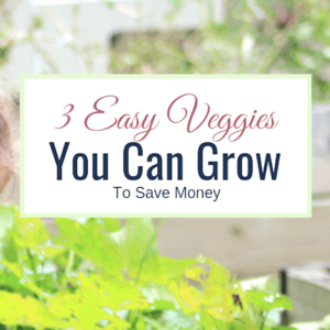 Think You Can't Garden? 3 Easy Vegetables You Can Grow To Save Money