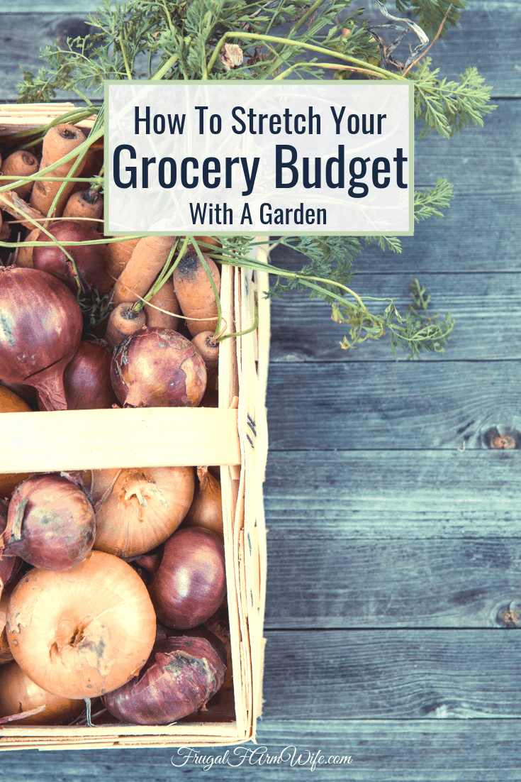 Most Americans spend 15% of their budget on groceries. Here's how you can stretch your grocery budget with a garden!
