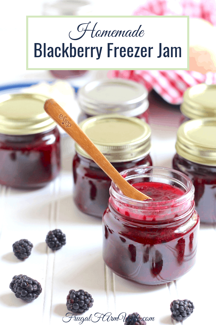here's the blackberry freezer jam recipe you need to preserve your harvest - without even cooking!
