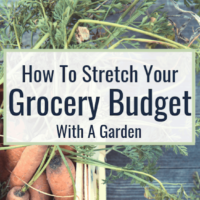 How to Stretch Your Grocery Budget With a Garden