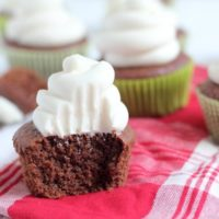 Coconut Flour Chocolate Cupcakes