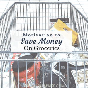 Why You should Save Money On Groceries