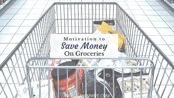 motivation to save money on groceries