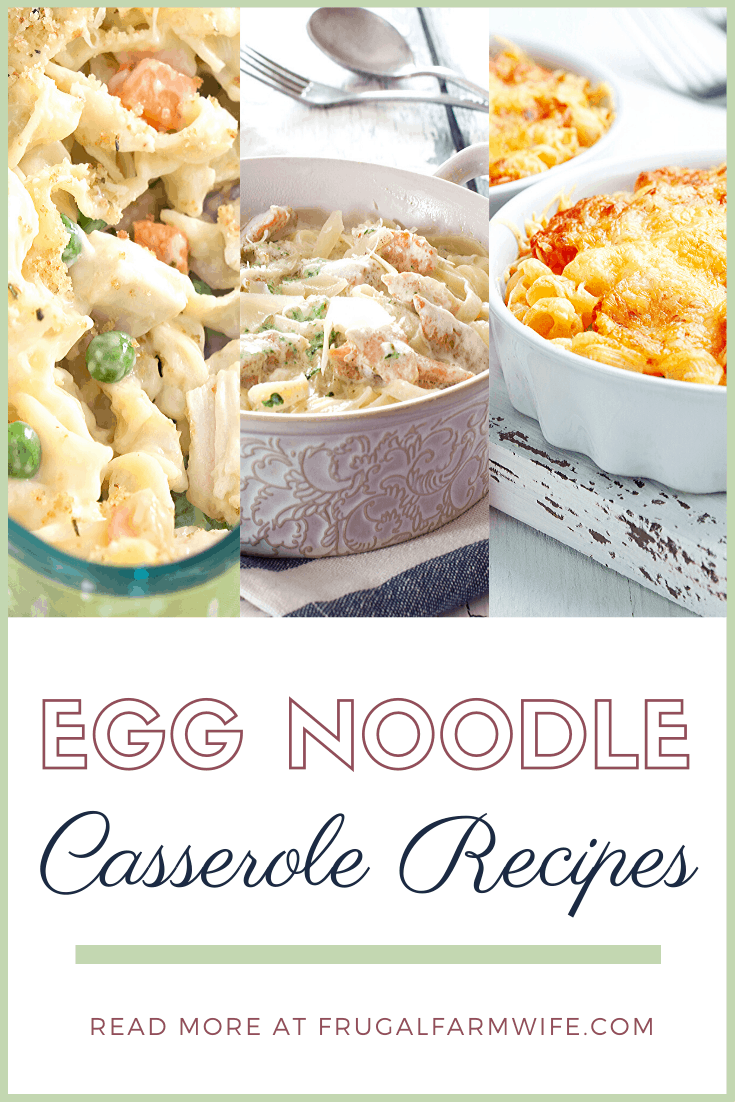 These 10 egg noodle casseroles recipes will brighten up your table, simplify dinner, and make your whole family drool!
