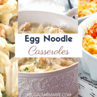 Egg Noodle Casserole Recipes