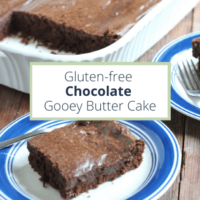 Gluten-Free Chocolate Gooey Butter Cake