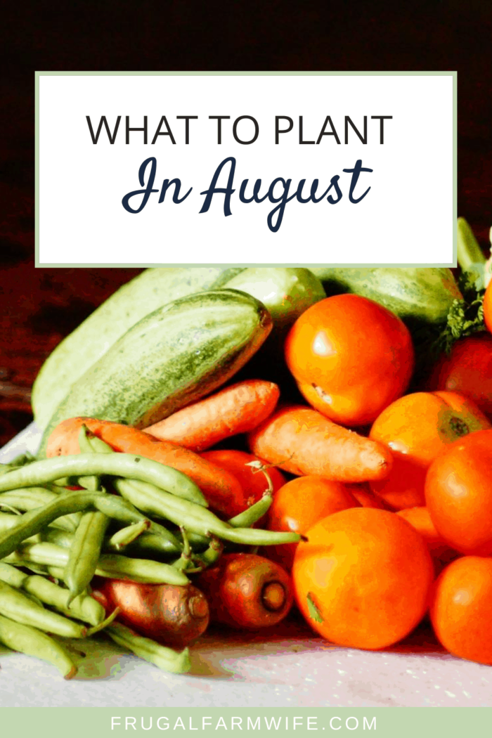 Okay gardeners! Here's what to plant in August according to your zone.