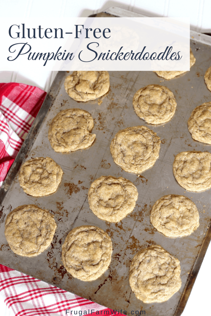 pumpkin snickerdoodles gluten-free! So easy to make, and so much yummy pumpkin spice flavor.